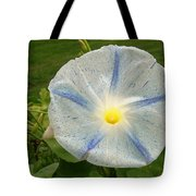 Spectacular Blue Morning Glory Tote Bag