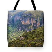 Blue Mountains Viewpoint Tote Bag