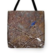 Blue Norther Tote Bag