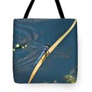 Blue On Blue Tote Bag