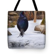 Blue Pheasant  Tote Bag