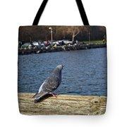 Blue Pigeon Tote Bag