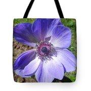 Blue Poppy Anemone Tote Bag