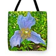 Blue Poppy In Les Jardins De Metis Or Reford Gardens Near Grand-metis-quebec Tote Bag