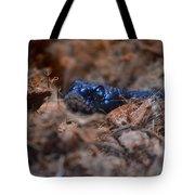 Blue Racer Snake Tote Bag