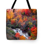 Blue Ridge Parkway Waterfall In Autumn Tote Bag