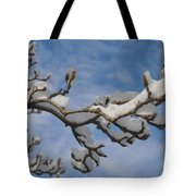 Blue Skies In Winter Tote Bag