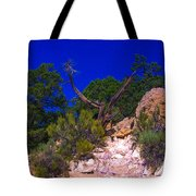 Blue Sky Over The Canyon Tote Bag