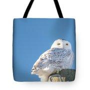 Blue Sky Snowy Tote Bag