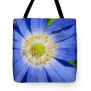 Blue Swan River Daisy Tote Bag