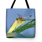Blue Tail Dragonfly On Navarre Beach Tote Bag