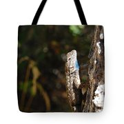Blue Throated Lizard 2 Tote Bag