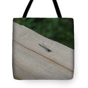 Blue Tipped Dragon Fly Tote Bag