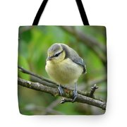 Blue Tit In A Cherry Tree Tote Bag