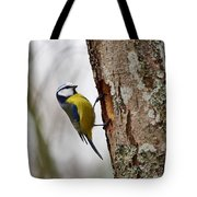 Blue Tit Searching Home Tote Bag