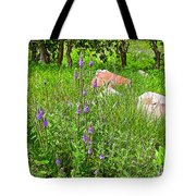 Blue Vervain And Rocks In Pipestone National Monument-minnesota  Tote Bag