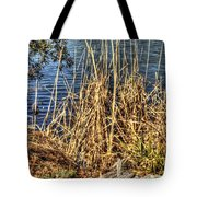 Blue Water 2 Tote Bag
