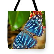 Blue Wave Butterfly Tote Bag