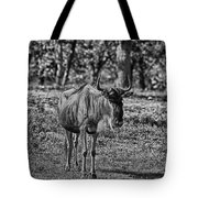 Blue Wildebeest-black And White Tote Bag