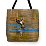 Blue-winged Teal Flapping Tote Bag