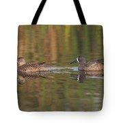 Blue-winged Teal Pair Tote Bag