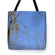 Blue With A Gray Tote Bag