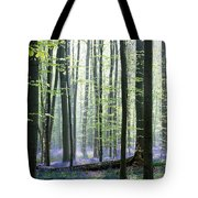 Bluebell Forrest 1 Tote Bag