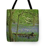 Bluebell Wood 1 Tote Bag