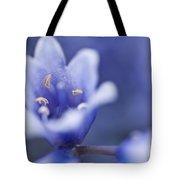 Bluebells 5 Tote Bag
