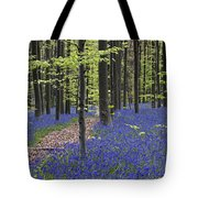 Bluebells In Beech Forest Tote Bag