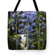 Bluebells 8 Tote Bag