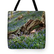 Bluebells At Bransdale Tote Bag