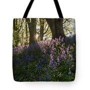 Bluebells Backlit Tote Bag