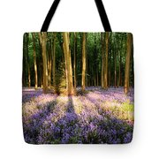 Bluebells In Shadows Tote Bag