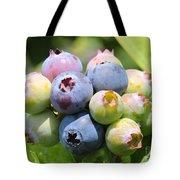 Blueberries Closeup Tote Bag