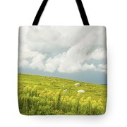 Blueberry Field And Goldenrod With Dramatic Sky In Maine Tote Bag by Keith Webber Jr