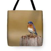 Bluebird At His Post Tote Bag