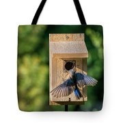 Bluebird At Nest Tote Bag