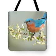 Bluebird Floral Tote Bag by William Jobes