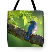 Bluebird In The Morning Tote Bag