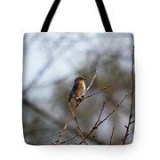 Bluebird In The Sun Tote Bag