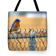 Bluebird On A Fence Tote Bag
