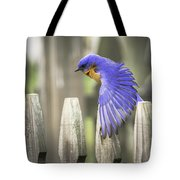 Bluebird On The Fence Tote Bag