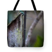 Bluebird With Nest Material In Beak Tote Bag