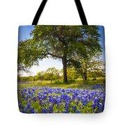 Bluebonnet Meadow Tote Bag