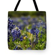 Bluebonnets In Spring Tote Bag