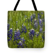 Bluebonnets In The Grass Tote Bag