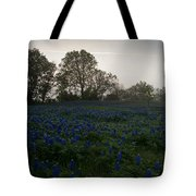 Bluebonnets On A Hazy Morning Tote Bag
