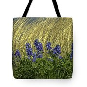 Bluebonnets With Ladybug Tote Bag