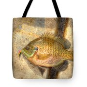 Bluegill In Hdr Tote Bag
